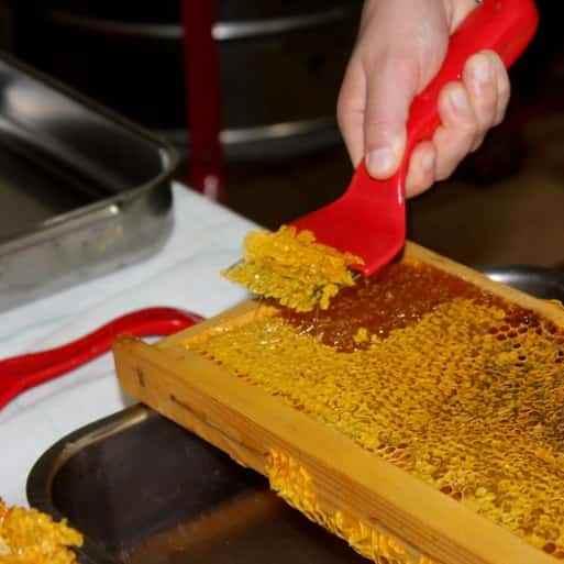 estrazione del miele