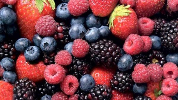 frutti di bosco coltivazione O1
