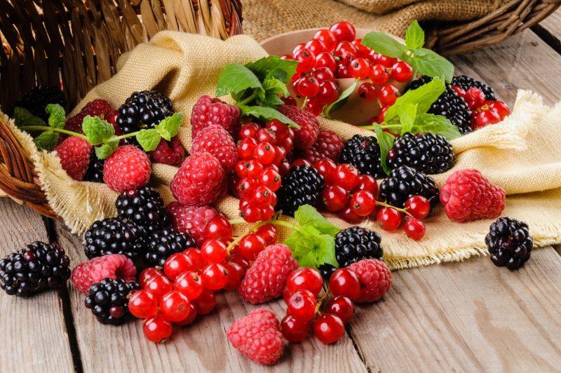Frutti di bosco, un concentrato di virtù
