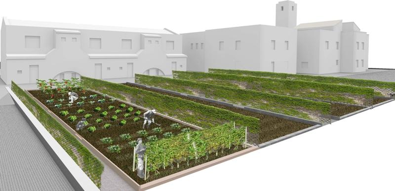 "Orti urbani: da ""orticelli di guerra"" a vere e proprie aree verdi"