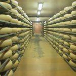 formaggi prodotti a benevento