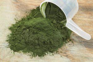 Spirulina-Powder1024x682-300x200 Agricoltura biologica: una sfida contro la disoccupazione