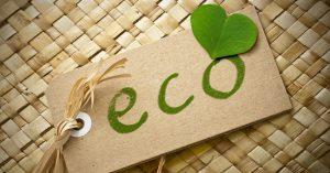 ecofriendly12-300x157 Agricoltura biologica: una sfida contro la disoccupazione
