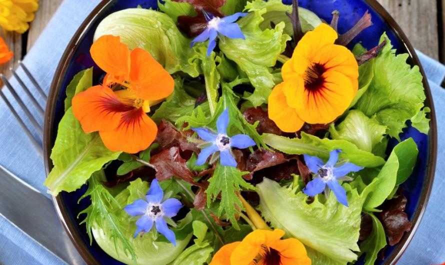 Le proprietà delle specie di fiori più comuni