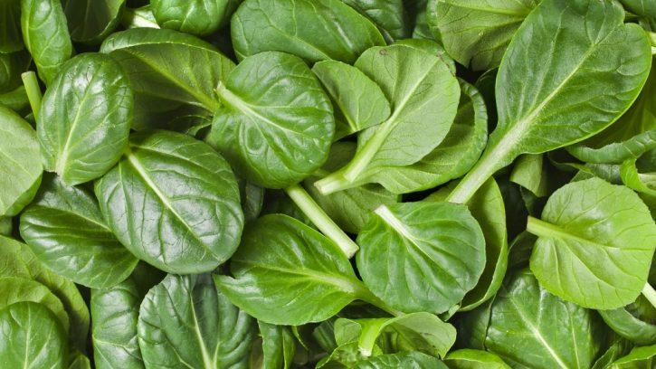 spinaci-725x408 Spinaci: benefici e caratteristiche nutrizionali