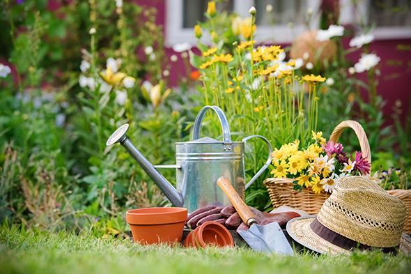cuida-tus-plantas-en-verano-8-size-3 Consigli utili per curare i fiori da balcone in primavera ed estate