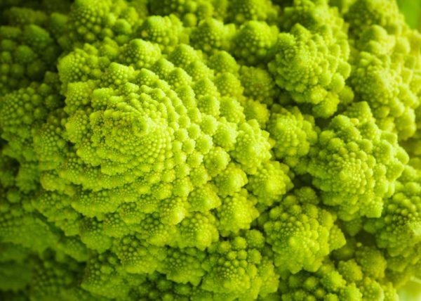broccolo-romanesco-fibonacci-799x570-e1548844462730 Cavolo: un prezioso alleato di stagione