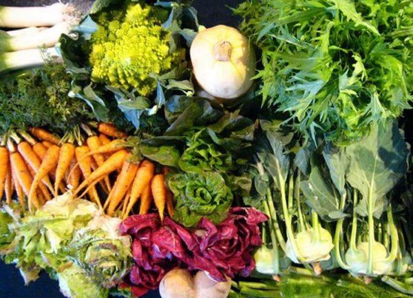 trapianto-delle-verdure-invernali_NG1-e1550252188982 Le proprietà benefiche di ortaggi e verdure invernali