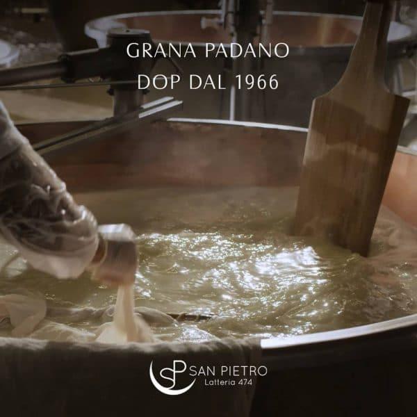 """31880896_2156217337738820_6957684631101505536_n-1-e1553508899490 Grana Padano DOP """"Selezione da fieno"""" San Pietro, un prodotto nuovo della tradizione Made in Italy"""