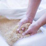 farina bio