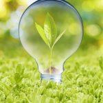 Verde e ambiente